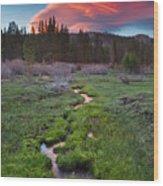 Lenticular Meadow Wood Print