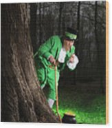 Leprechaun With Pot Of Gold Wood Print