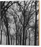 Leta Wood Print by Ken Walker