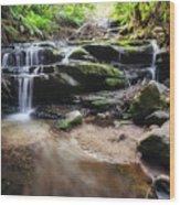 Leura Cascades - Blue Mountains, Australia. Wood Print