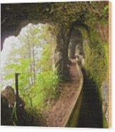Levada Da Serra Do Faial, Madeira Wood Print