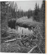 Liesijoki.  Seitseminen National Park Wood Print