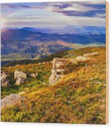Light On Stone Mountain Slope With Forest Wood Print