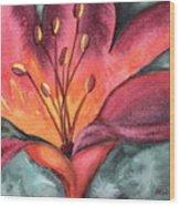Lily Blaze Wood Print