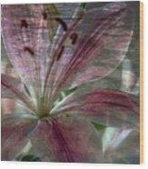 Lily Blossom Wood Print