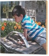 Little Boy And Flowers Wood Print