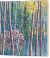 Little Mountain Beaver Pond 04 Wood Print