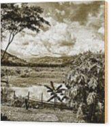 Llanos Venezolanos Wood Print