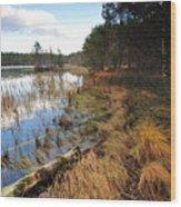 Loch Garten Wood Print