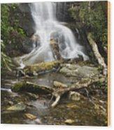 Log Hollow Falls North Carolina Wood Print
