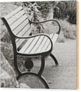 Lone Bench In The Park. Wood Print
