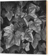 Lone Ranch Leaves 4930 Wood Print