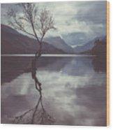 Lone Tree At Llyn Padarn Wood Print