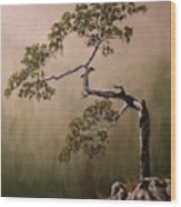 Lonesome Mountain Pine  Wood Print