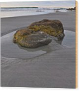 Longsands Rock Wood Print by Catherine Easton
