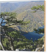 Look At The Pine Trees And The Lake Wood Print
