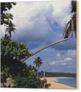 Los Tubos Beach Wood Print