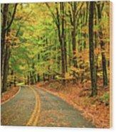Lost In Pennsylvania - Paint Wood Print