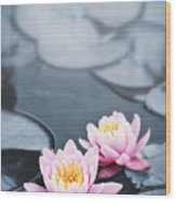 Lotus Blossoms Wood Print by Elena Elisseeva