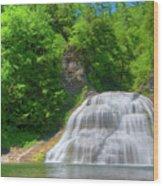 Lower Falls 0485 Wood Print