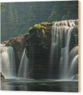 Lower Lewis Falls Wood Print by Blanca Braun