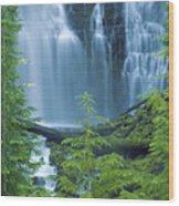 Lower Proxy Falls Wood Print