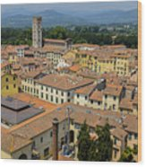 Lucca Italy Wood Print