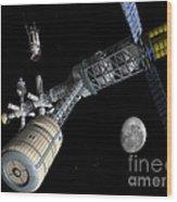 Lunar Cycler Centrifuge Wood Print