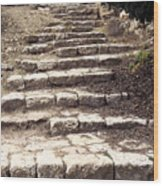 Maccabean Steps St Peter In Gallicantu Wood Print