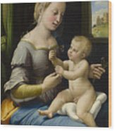 Madonna Of The Pinks Wood Print
