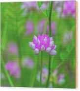 Magenta Wildflower Wood Print