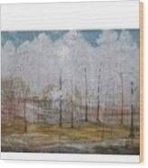 Maggie Valley Wood Print