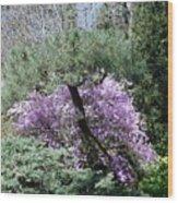 Magic Garden Wood Print