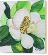 Magnolia Iv Wood Print