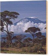 Majestic Mount Kilimanjaro Wood Print