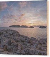 Malgrats Islands Wood Print