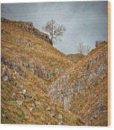 Malham Wood Print