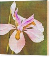 Mama's Iris Wood Print