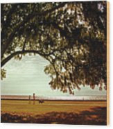 Mandeville Lakefront Wood Print