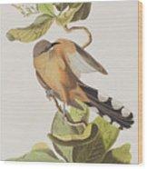 Mangrove Cuckoo 1 Wood Print