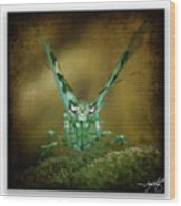 Mantis 5 Wood Print
