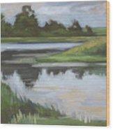 Marsh, June Afternoon Wood Print