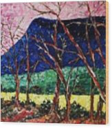 Massanutten Peak Awaiting Spring Wood Print