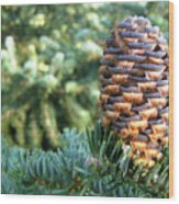 Masterful Construction - Spruce Cone Wood Print