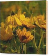 Maximilian Sunflowers Wood Print