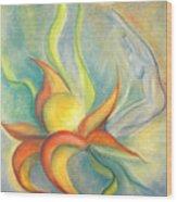 Menopause Wood Print