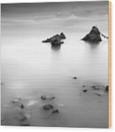 Meoto Iwa Wood Print