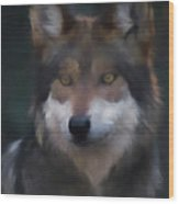 Mexican Grey Wolf Da Wood Print
