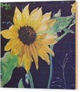 Midday Sunflower Wood Print