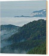 Mist Over Apuseni Wood Print by Gabriela Insuratelu
